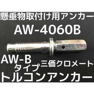 サンコーテクノ トルコンアンカー AW-4060B W1/2 全長127mm 25本 スチール製 三価クロメート  コンクリート用 懸垂物取付け用 テーパーボルト式「取寄せ品」|tenyuumarket