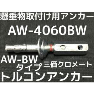 サンコーテクノ トルコンアンカー AW-4060BW W1/2 全長131mm 25本 スチール製 三価クロメート  コンクリート用 懸垂物取付け用アンカー ウェッジ式「取寄せ品」|tenyuumarket