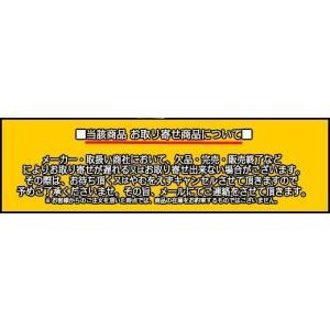 イーグルアンカー SEG-10S 1本 M10 Sサイズ(ショートサイズ) SEGタイプ ステンレス製 コンクリート用/注入方式 SUS 304系 ミリねじ「取寄せ品」 tenyuumarket 06