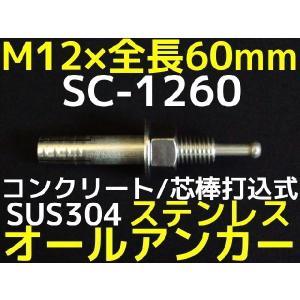 サンコーテクノ オールアンカー SC-1260 M12×60mm 1本 ステンレス製 SUS304系 コンクリート用 芯棒打込み式「取寄せ品」|tenyuumarket