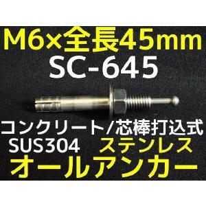 サンコーテクノ オールアンカー SC-645 M6×45mm 1本 ステンレス製 SUS304系 コンクリート用 芯棒打込み式「取寄せ品」|tenyuumarket