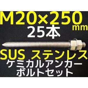 ケミカル アンカーボルト セット ステンレス SUS M20×250mm 25本 寸切ボルト1本 ナット2個 ワッシャー1個 Vカット 両面カット SUS304「取寄せ品」 tenyuumarket