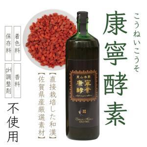 天山本草 康寧酵素 900ml 和漢 プレミアム 健康 酵素ドリンク 無添加 発酵飲料 自然 30日分 |tenzanhonso