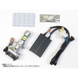 即納 プロテック バイク用 LEDヘッドライトバルブキット(ロングヒートシンクタイプ) LB4-L H4 Hi/Lo 6000K 65002|terranet