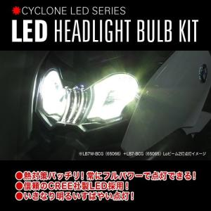 プロテック BMW C 650 GT用 LEDヘッドライトバルブキット LB7W-BCG H7 Hi/Lo  6000K ※Hiビーム側専用 65066|terranet