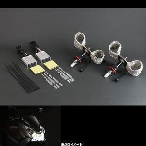 サインハウス(SYGN HOUSE) LED RIBBON LEDヘッドライト HS5型タイプ1 DC専用 2灯セット PCX(日本仕様)用 00076461|terranet