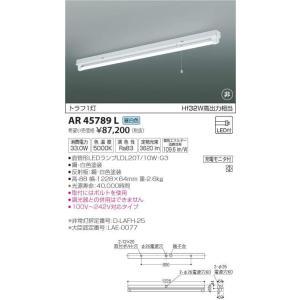 AR45789L トラフ1灯 直管LEDランプ搭載 非常用照明器具 [LED昼白色] コイズミ照明|terukuni
