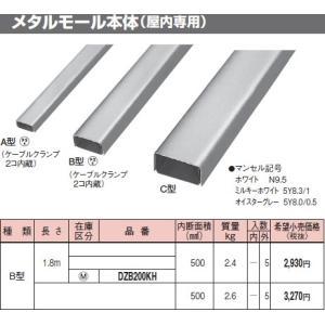 DZB200KH メタモール B型 メタルモール本体(屋内専用) オイスターグレー パナソニック|terukuni