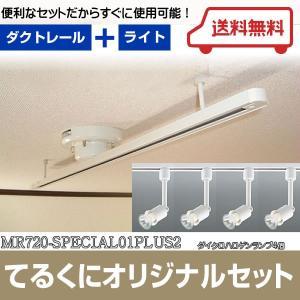 MR720-SPECIAL01PLUS2 ワンタッチ簡易式ダクトレール  ダイクロハロゲンスポット4個付 スペシャルキット  あすつく てるくにオリジナルセット terukuni