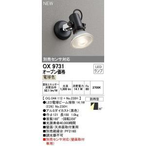 OX9731 別売センサ対応型  アウトドアスポットライト [LED電球色][ブラック] オーデリック terukuni