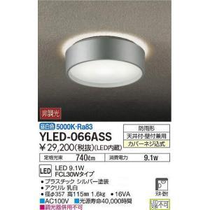 屋外用ライト天井・壁付兼用シルバーアウトドア軒下灯 ポーチライト[LED昼白色][FCL30Wタイプ]YLED-066ASS|terukuni
