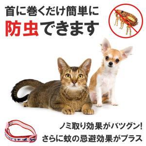 薬用ノミと蚊よけ首輪 ペット用品 ハーネス|teruyukimall