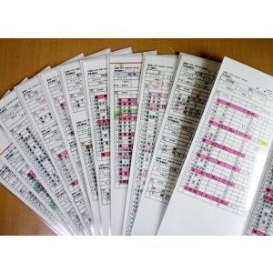 運転士用時刻表(レプリカ) 485系 特急電車 5084M「ひゅうが4号」 485系 特急電車 5017M「にちりん17号」 |tetsupita|02