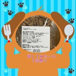 ドッグフード 国産無添加鹿肉ドッグフード ペットフード おいしいわんちゃんのごはん 安心ドッグフードお試しサイズ フードを試してみたい方用40グラム