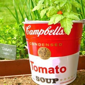 キャンベル バケツ (CAN) Campbell's インテリア アメリカ雑貨 アメリカン雑貨|texas4619