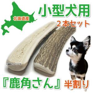 小型犬用 蝦夷鹿の角 『鹿角さん』 半割りタイプ2本セット 天然 無添加 北海道産 犬のおもちゃ かむおもちゃ エゾ鹿 エゾシカ ツノ デンタル|tezukuriyasan