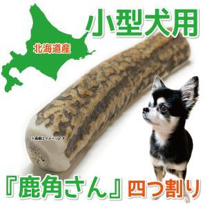小型犬用 蝦夷鹿の角 『鹿角さん』 四つ割り 1本 天然 無添加 北海道産 犬のおもちゃ かむおもちゃ エゾ鹿 エゾシカ ツノ デンタル 鹿角 4半割り|tezukuriyasan