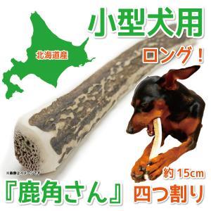 小型犬用 蝦夷鹿の角 『鹿角さん』 四つ割りロングタイプ 1本 天然 無添加 北海道産 犬のおもちゃ かむおもちゃ エゾ鹿 エゾシカ ツノ デンタル|tezukuriyasan