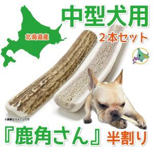 中型犬用 蝦夷鹿の角 『鹿角さん』 半割りタイプ 2本セット 天然 無添加 北海道産 犬のおもちゃ かむおもちゃ エゾ鹿 エゾシカ ツノ デンタル|tezukuriyasan