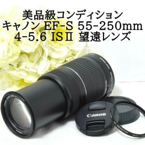 キャノン Canon EF 100-300mm F4.5-5.6 USM 望遠ズームレンズ