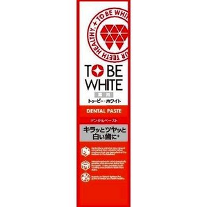 TBW 薬用デンタルペースト 100g|4582469490616 tc の商品画像|ナビ