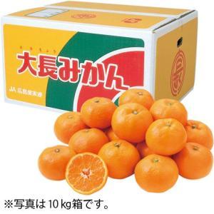 お歳暮 送料無料 広島県産(JA広島ゆたか) 広島大長みかん S・5kg|the-fuji