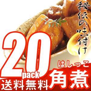 [ 訳あり ] はしっこ 角煮 (500g×20P)  豚角煮/ブタ角煮/とろける柔らかさ/ジューシー/調理も簡単 豚肉 バラ|the-nikuya
