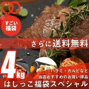 訳あり はしっこ お肉 福袋 送料無料 6種 4kg 人気シリーズ 牛ハラミ・牛カルビ・豚ロース・ハンバーグ などなど|the-nikuya