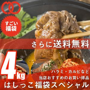 訳あり送料無料 はしっこ福袋Dセット 6種4kg 人気のはしっこシリーズ ハラミ 豚トロ 味付豚バラ うでスライス 豚角煮 ハンバーグパテ まつなが牛切り落とし|the-nikuya