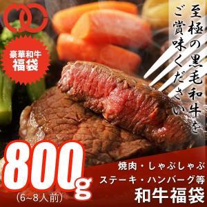 送料無料 福袋 ステーキ 焼肉 しゃぶしゃぶ ハンバーグ等、和牛の旨味を存分に楽しめる 和牛福袋(800g 6〜8人前) 黒毛和牛 牛肉 父の日 ギフト お祝い お中元|the-nikuya