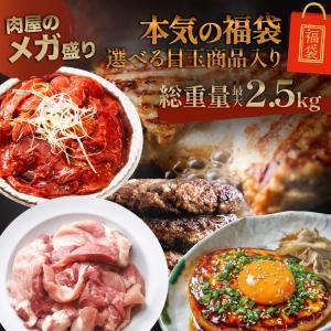 訳あり はしっこ お肉福袋 送料無料 4種 3kg 人気のはしっこシリーズ・ハラミ・豚ロース・ハンバーグなど|the-nikuya