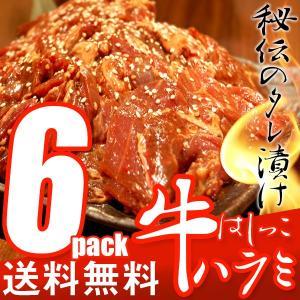 訳あり 送料無料 はしっこタレ漬け 牛 ハラミ (500g×6P) 業務用 牛肉 ハラミ 焼肉 焼き肉 バーベキュー|the-nikuya