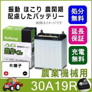 30A19R 日立化成 農機 バッテリー トラクター 耕うん機 国産 AG 豊作くん 互換 28A19R 30A19R thebattery