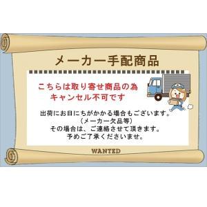 ミツバサンコーワ ガードッグ バイスガード2 オレンジ BS-003D|thebattery|02