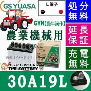 30A19L  ジーエス・ユアサ GYN 豊年満作 シリーズ GS/YUASAバッテリー thebattery