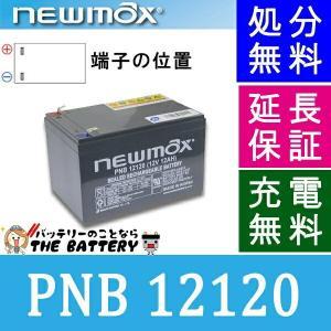 PNB12120 セニアカー 車椅子バッテリー サイクルバッテリー ニューマックス 互換 HF12-12 / NP12-12 制御弁式 産業用 AGMバッテリー|thebattery