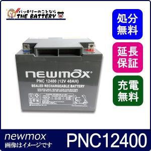 PNC12400 セニアカー 車椅子 バッテリー 2個セット ニューマックス 互換 HC38-12 NP38-12 HF44-12 SC38-12 SER38-12  制御弁式 産業用 AGMバッテリー|thebattery
