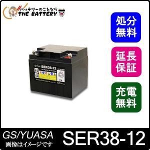 SER38-12 (ボルトナットタイプ) thebattery