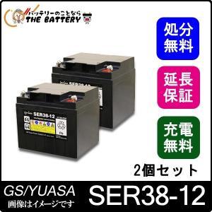 2個セット SER38-12 (ボルトナットタイプ) thebattery