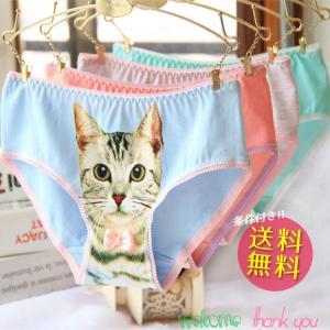 ショーツ ローライズ 可愛い 猫  レディース 美尻 インナー 肌着 ひびかない 綿素材 ノンストレス ヌーディー ショーツ|thebest