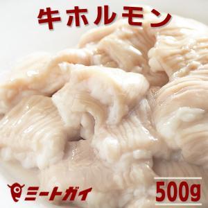 ポイント消化 牛ホルモン(シマチョウ・テッチャン) 500g