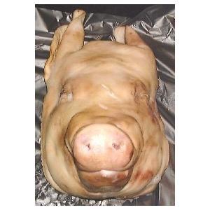 豚の頭  チラガー含む 豚頭肉 ポークヘッド|themeatguy|02