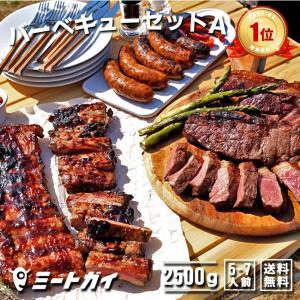 バーベキュー セットA ステーキ ソーセージ 他合計2.5kg 送料無料 洋風焼肉 究極のバーベキュー肉/バーベキューセット バーベキュー BBQ|themeatguy