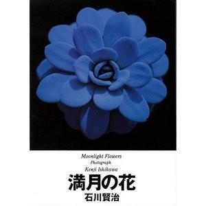 満月の花−お花見月光浴|theoutletbookshop