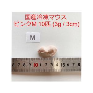 国産 高品質 冷凍マウス ピンクM 10匹 冷凍餌