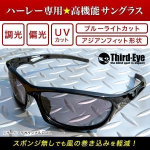 オリジナル調光偏光サングラス TE301 サードアイロゴ入り|thirdeye