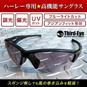 オリジナル調光偏光サングラス TE303 サードアイロゴ入り|thirdeye