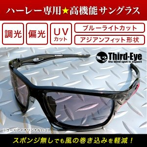 オリジナル調光偏光サングラス TE306 サードアイロゴ入り|thirdeye