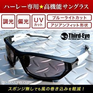 オリジナル調光偏光サングラス TE307 サードアイロゴ入り|thirdeye