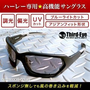 オリジナル調光偏光サングラス TE308 サードアイロゴ入り|thirdeye